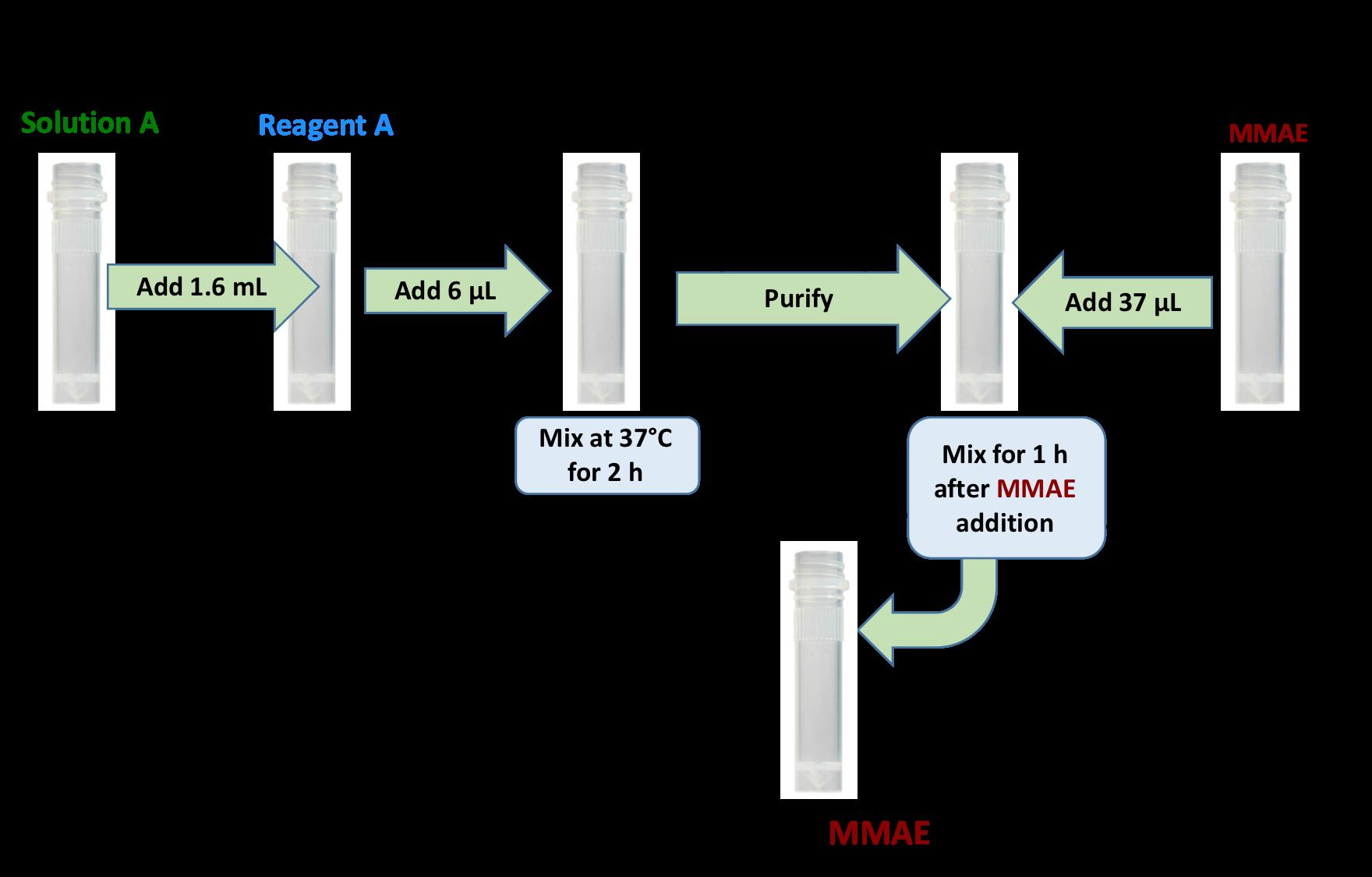 cm11409-antibody-mmae-kit-protocol.png